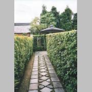 The subtemple Taizo-in in Myoshin-ji in Kyoto